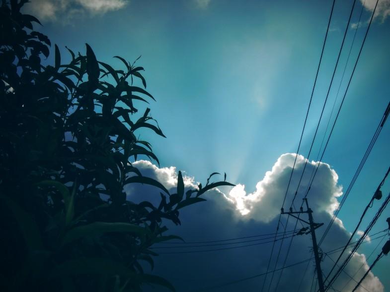 散歩中に見かけた空