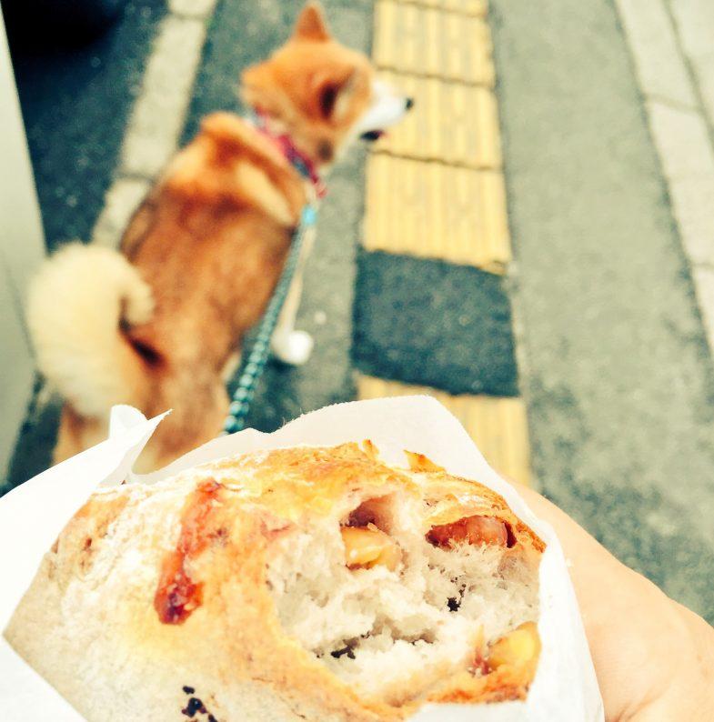 パン食べながら散歩