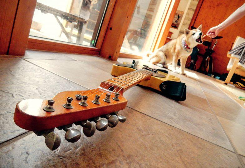 ギターをメンテ